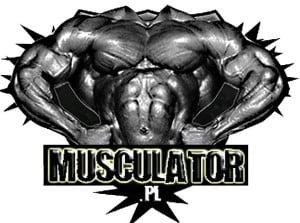 musculator